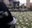 A wheelchair-user sits in front of a stage, while the grass is covered by white flowers