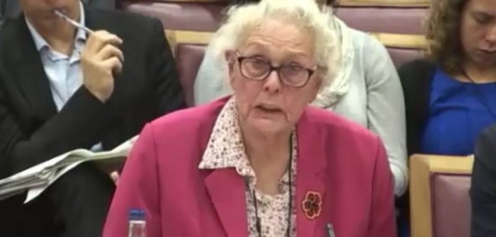Gwynneth Pedler giving evidence to the committee