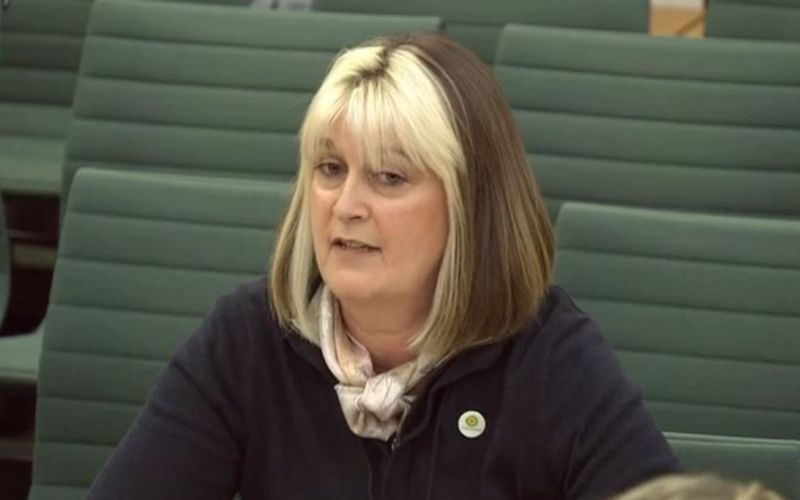 Sarah McKee giving evidence to the committee