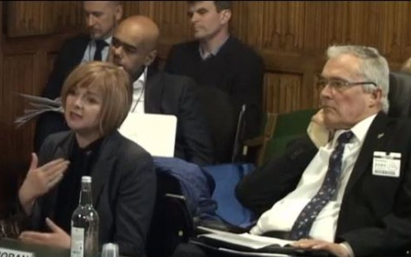 Jo-An Moran giving evidence, next to Dr Stephen Duckworth