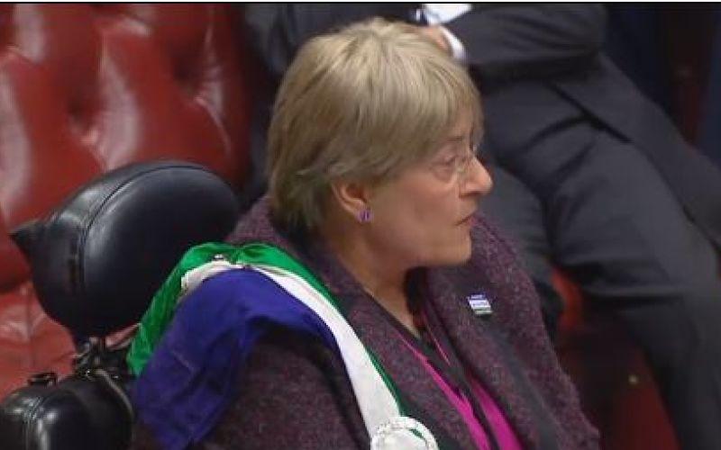 Baroness Brinton speaking in the debate