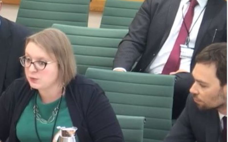 Gemma Hope and Rob Holland give evidence in the House of Commons