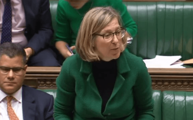 Sarah Newton speaking in parliament