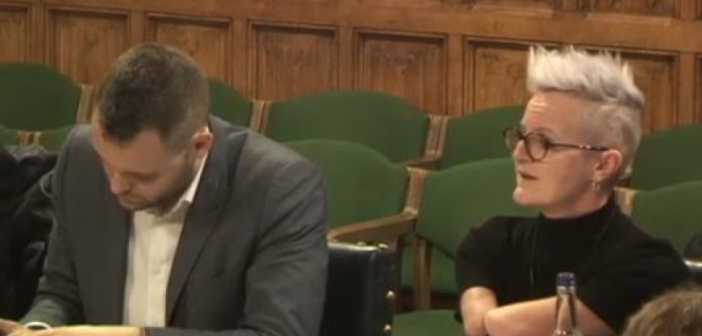 Tara Flood speaking in a parliamentary committee room, while sitting next to an MP