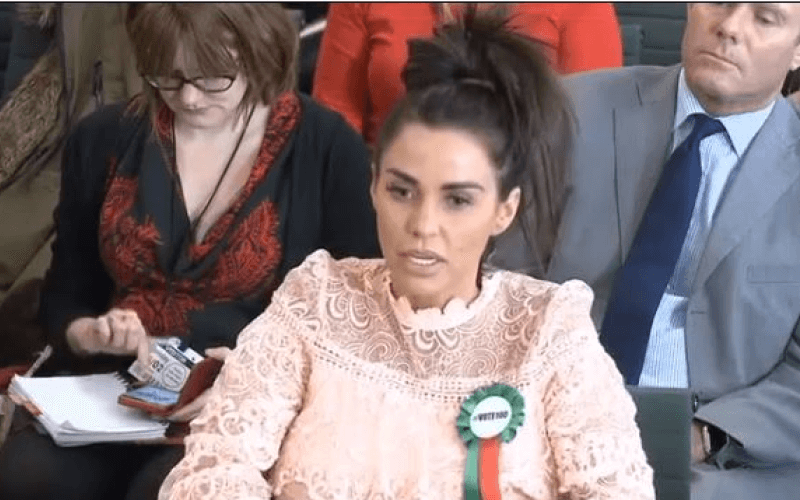 Katie Price talking in the House of Commons