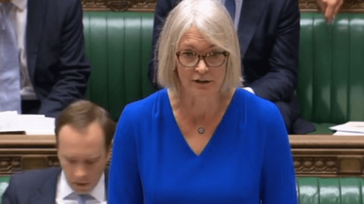 MPs' online abuse report: 'Government ignored disabled people in safety probe'