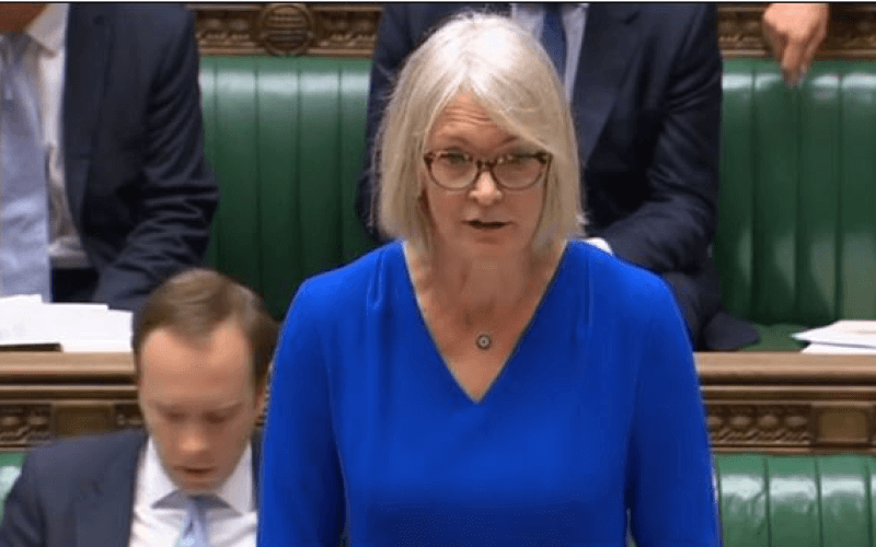 Margot James speaking in the House of Commons