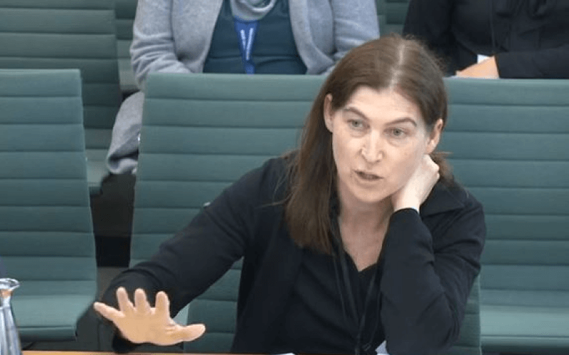Donna Ward giving evidence in parliament