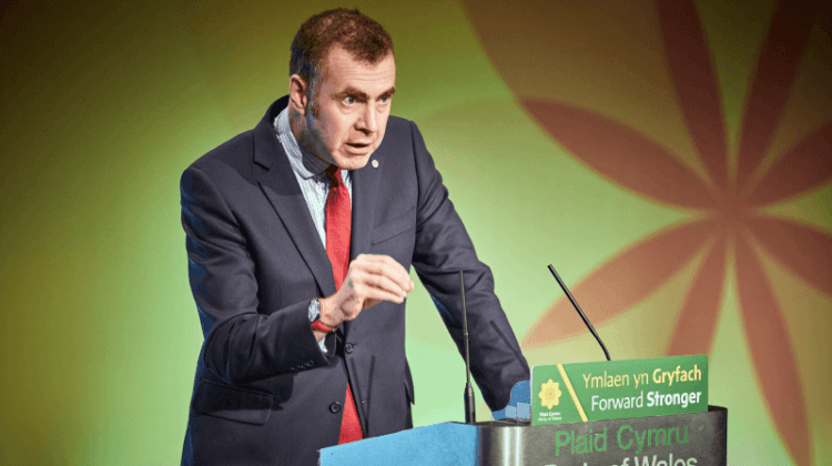 Election 2019: Plaid Cymru manifesto pledges free social care for Wales