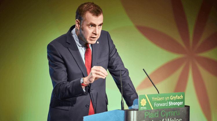 Election 2019: Plaid Cymru manifesto pledges free social care for Wales