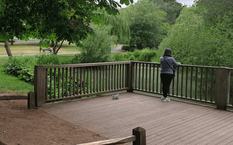 A woman stares at a pond in a park