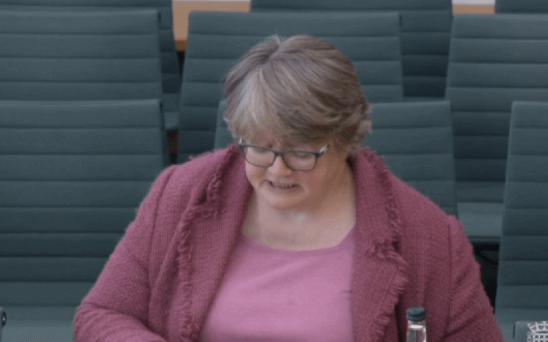 Therese Coffey in a committee room