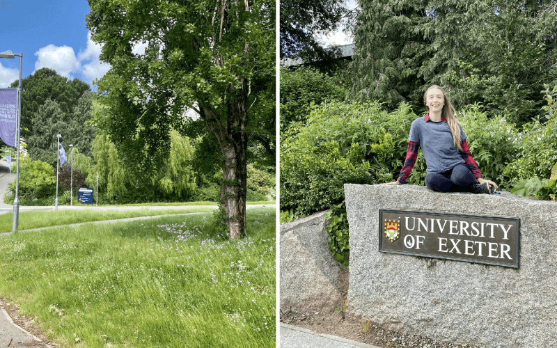 Pictures of a leafy campus and of Scarlett Aylen sitting on a rock marked University of Exeter