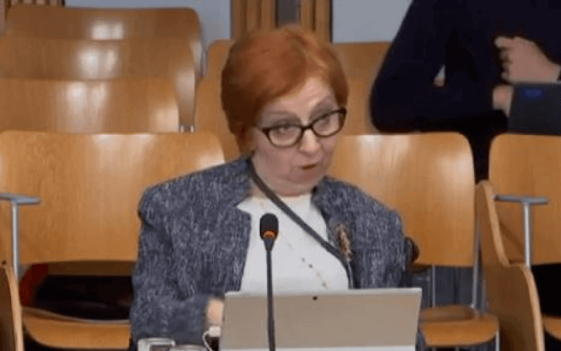 Sally Witcher giving evidence to a Scottish parliament committee in 2019