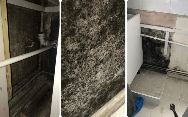 Three pictures of black mould in Maxime's flat